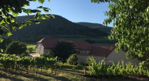 Weinkommission Stiess